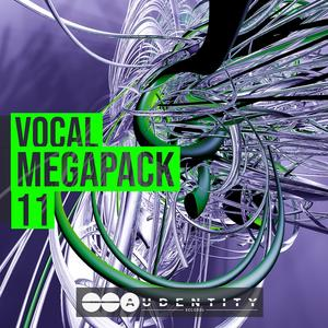 Audentity Records – Vocal Megapack 11 Crack Free Download